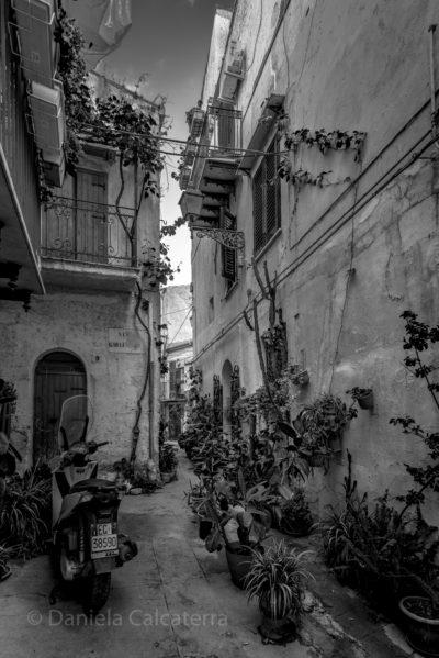 foto di Daniela Calcaterra
